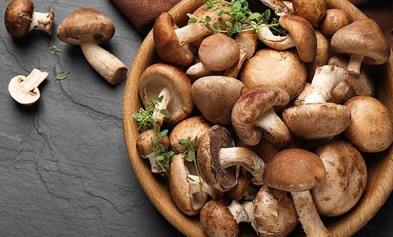 Nấm hương và các món ngon chế biến từ nấm hương