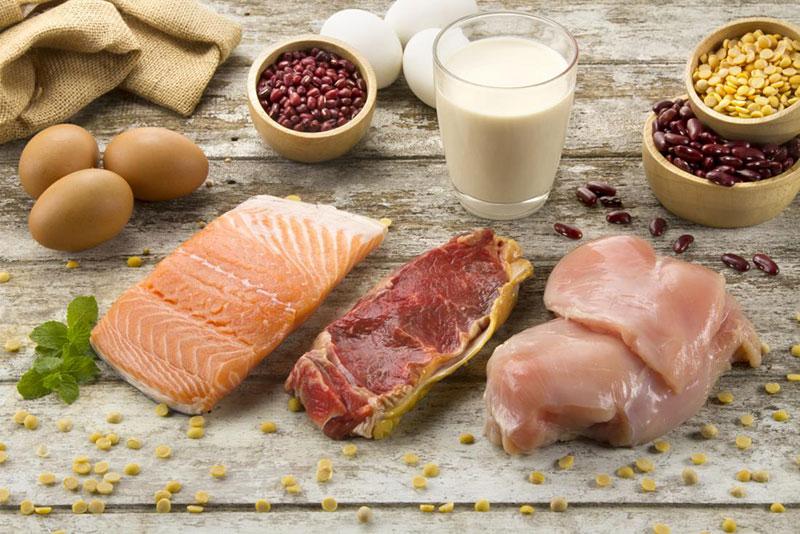 Protein cho cơ bắp phát triển mạnh mẽ